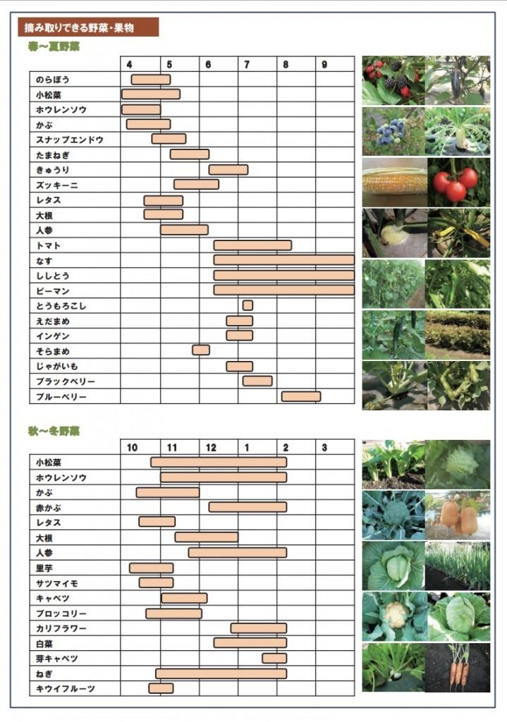 収穫体験時期